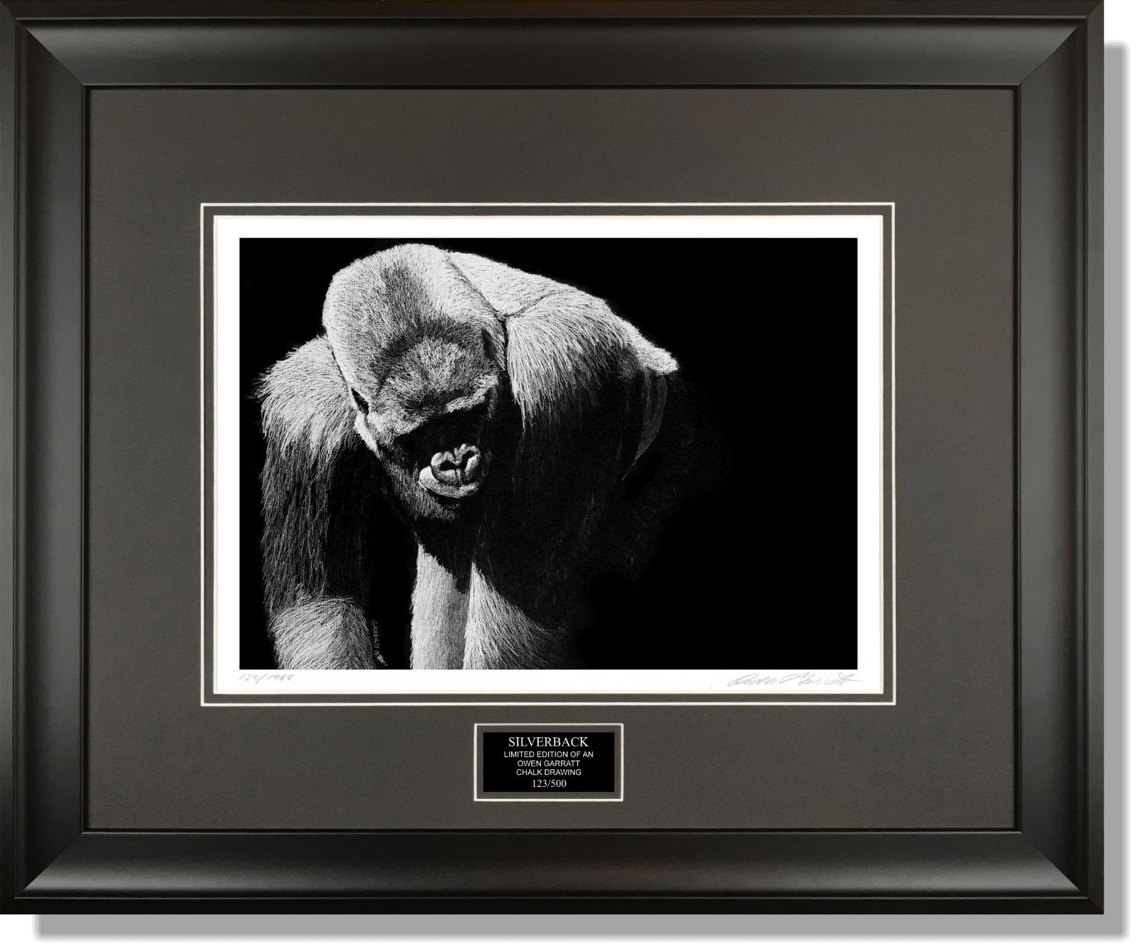 SILVERBACK - Wildlife art chalk art gorilla drawing by Owen Garratt framed