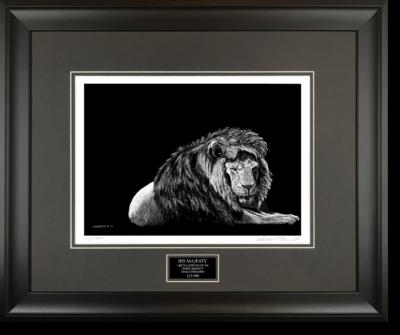 HIS MAJESTY - Wildlife art chalk art lion drawing by Owen Garratt framed